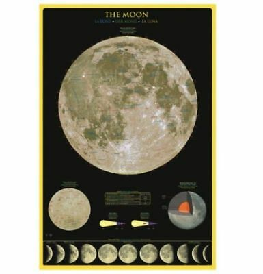 The Moon - Educational Maxi Poster 61x91.5cm XS7740