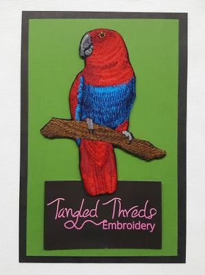 """Eclectus Parrot Female, Bird Embroidered Patch 3.9"""" x 5.2"""""""