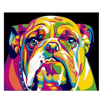 40*50cm Painting By Number Animals Painting Calligraphy Acrylic Paint By Numbers