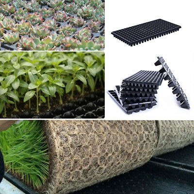 200 Cell PVC Seedling Starter Trays For Fruit Seed Germination Plant Propagation