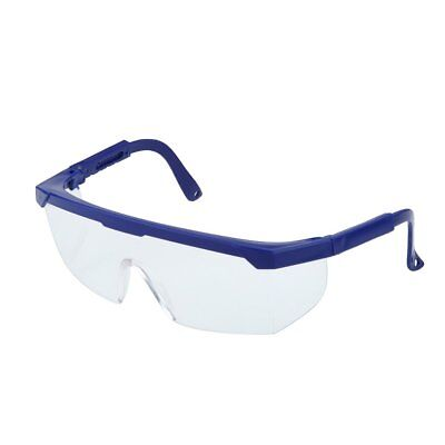 Safety Eye Protection Glasses Goggles Lab Dust Paint Dental Industrial (N)
