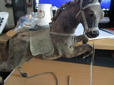 Very Old Horse Model