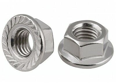 M16 X 2Mm Pitch Serrated Flange Nuts Hex Lock Nuts 304 A2-70 Stainless Steel