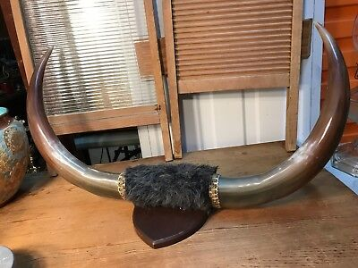 Pair of Vintage Style Faux Bullock Horns on Timber Plaque Man Cave Bar Vegan