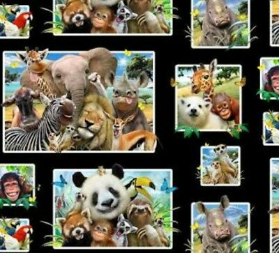 Zoo Selfies Quilt Panel * Noses Smiles & Love * Free Post * So Cute *