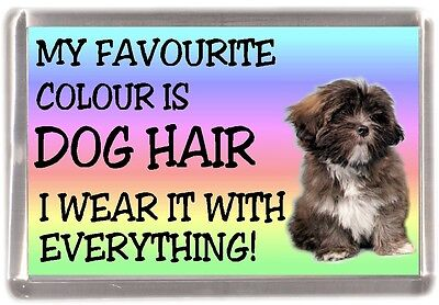 "Lhasa Apso Dog Fridge Magnet ""My Favourite Colour is Dog Hair""  -   by Starprint"