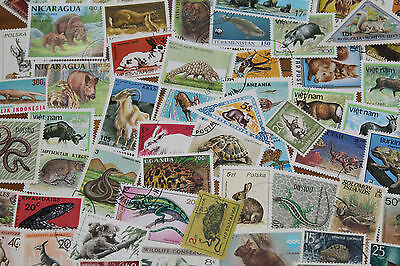 Bulk Lot  Animals Mixture Themed Stamps X 50  Good Mix Free Postage In Oz