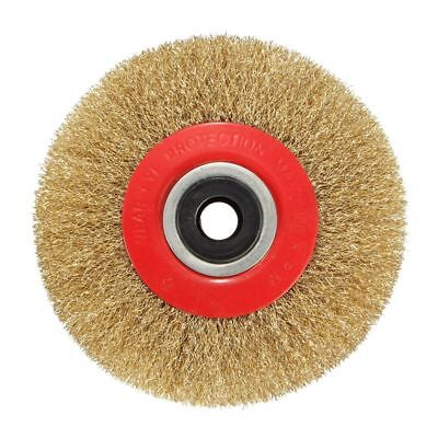 Wire Brush Wheel for Bench Grinder Polish + Reducers Adaptor Rings,5inch 12 M5M5