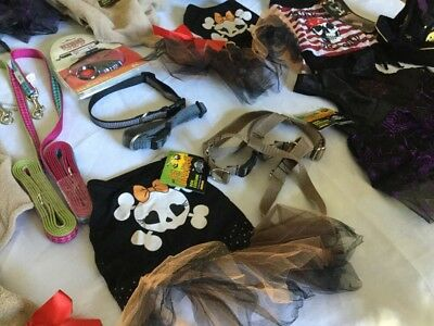 HUGE LOT SZ MED BRAND NEW Halloween Pet, Dog Costumes,Collars,Leashes, MORE
