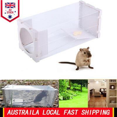 30*12*12CM Humane Rat Trap Cage Animal Rodent Mice Mouse Control Bait Catch EB