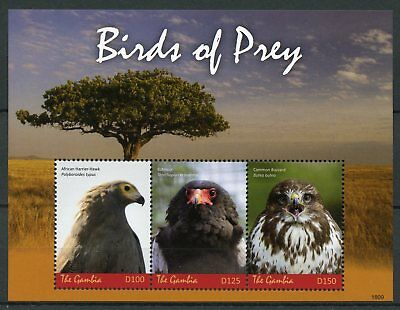 Gambia 2018 MNH Birds of Prey Hawks Buzzards Bateleur 3v M/S I Stamps