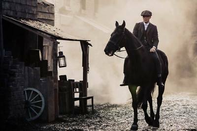 """16256  Hot Movie TV Shows - Peaky Blinders 8 21""""x14"""" Poster"""