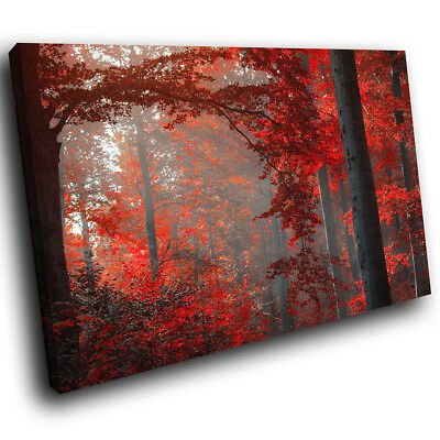 SC259 Red Black Grey Forest Cool Landscape Canvas Wall Art Large Picture Prints