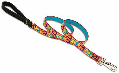 """Lupine Collars & Leads 31009 Crazy Daisy 3/4"""" X 6' Lead"""