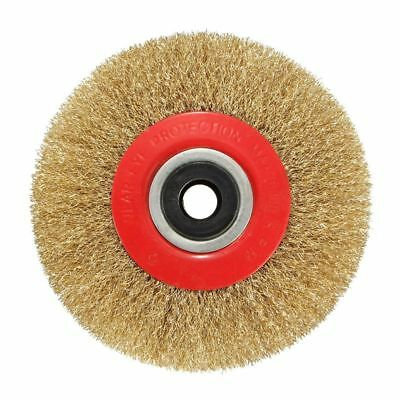 Wire Brush Wheel for Bench Grinder Polish + Reducers Adaptor Rings,5inch 12 D4W2