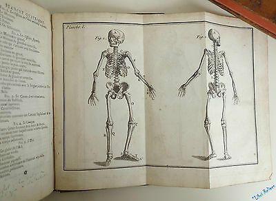 PERSON Elements d' Reasoned anatomy with 6 planches engraved 2nd Ed 1763