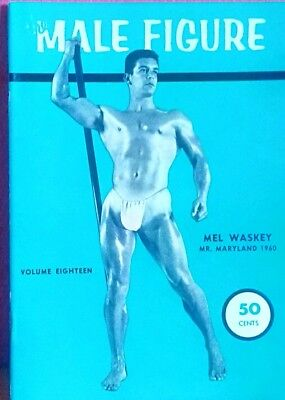 The male figure gay interest Magazine issue 18