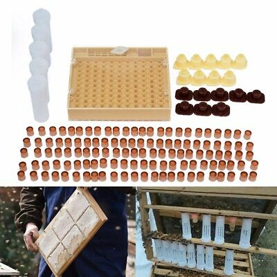 143Pcs Bee Queen Rearing Cupkit Complete Box System Beekeeping Cage Cell Cup Kit