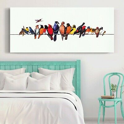 Colorful Birds Stretched Canvas Prints Wall Art Kids Home Decor Framed Painting