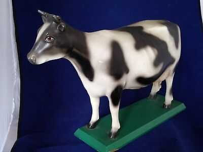 """HOLSTEIN FRIESIAN 18"""" COW ON BASE, with 100 year anniversary plaque"""