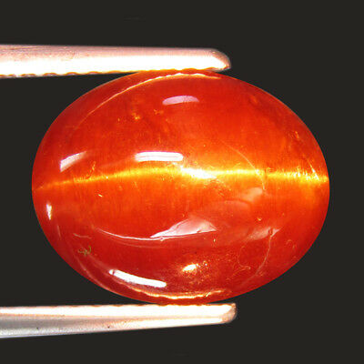 7.67 Ct Fine Quality Natural Scapolite Cat's Eye Oval Cabochon Loose Gemstone