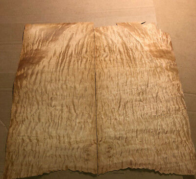 "Quilted Maple 10"" x 22"" 2Pcs Total Raw Wood Veneer AA 1054"