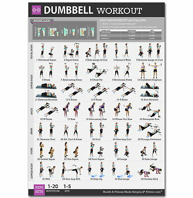 143224 Dumbbell Exercis Workout Health Body Exercises Wall Print Poster UK