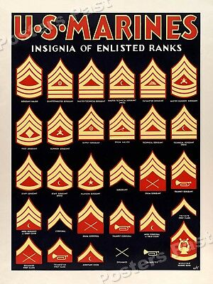 1940s US Marines Insignia Illustrated Vintage Style WW2 Poster - 18x24