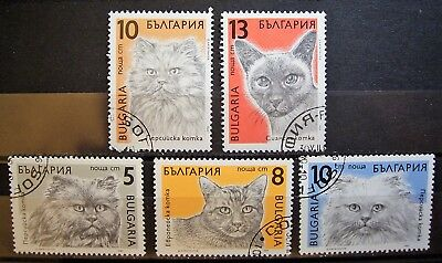 Bulgaria - Cats 5 CTO Stamps, Add To Your Collection