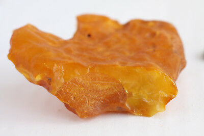 琥珀蜜蜡原石 raw amber stone rock 56.5g honey beeswax 100% natural Baltic 天然波罗的海琥珀蜜蜡