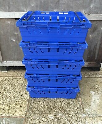 5 x Blue Bail Arm Crates/Trays/Plastic Baskets. Excellent Condition. Unbranded