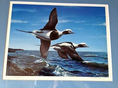 Robert Hautman Old Squaw Ducks Flying- Hand-Signed Numbered 3198 Ducks Unlimited