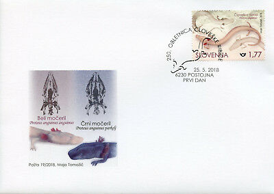 Slovenia 2018 FDC Proteus Anguinus 250th Anniv 1v Set Cover Fish Marine Stamps