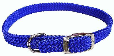 Hamilton 807 BL Poppies Series Flat Braid Blue Nylon Collar, 5/8 by 16-Inch