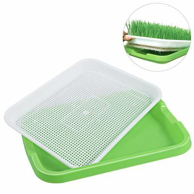 Seed Sprouter Tray BPA Free PP Soil-Free Big Capacity Healthy Wheatgrass Grower