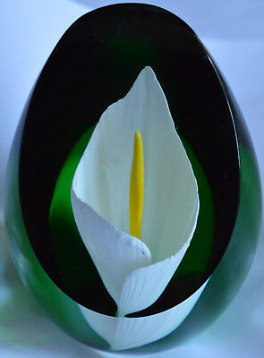 Good Caithness limited edition of 500 paperweight - Calla Lily
