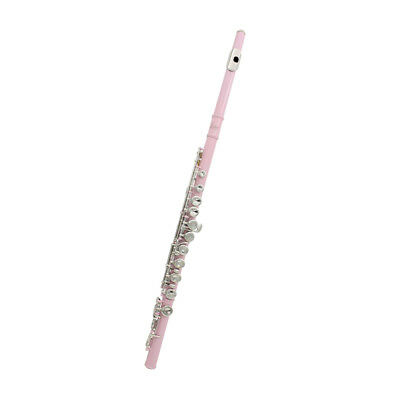 Cupronickel 16 Holes Flute C Key with Cleaning Cloth Stick for Kids Pink