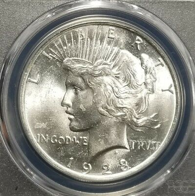 1923 Silver Peace Dollar PCGS MS64 (089)