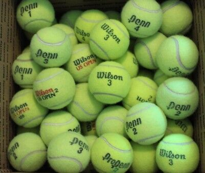 25 Used Tennis Balls Mixed Brands Good Quality Dog Fetch Toy Chairs Practice