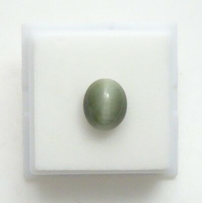 Green/Gray Cat's Eye Quartz - Oval Cabochon 10x8mm,12x10mm & 14x10mm Available!