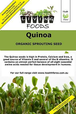 Quinoa Organic Sprouting Seeds