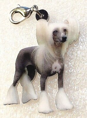 Chinese Crested Dog Acrylic Double-Sided Purse Charm Dangle Zipper Pull Jewelry