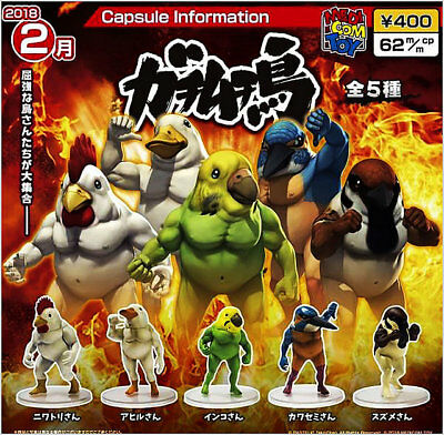 Medicom Toy x Takio Chan Bird Battle Muscle Collection Completed Set 5pcs