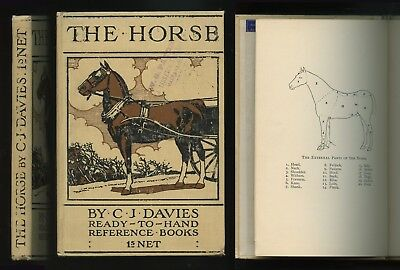 The Horse: Practical Horse Management by C.J. Davies 1907 Great Cover Graphics