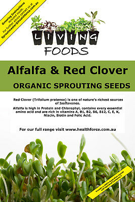 Alfalfa & Red Clover Organic Sprouting Seeds