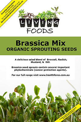 Brassica Salad Mix Organic Sprouting Seeds