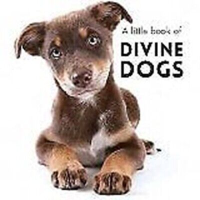 Little Book  Divine Dogs