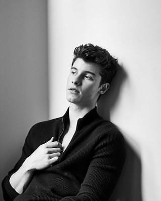"""MX36745 Shawn Mendes - Canadian Singer Songwriter Music Stars 14""""x17"""" Poster"""