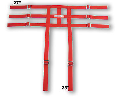 Racerdirect Junior Dragster Leg Containment Net , Wrap To Chassis Style , Red