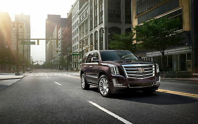 166117 2015 CADILLAC ESCALADE PLATINUM Wall Print Poster Affiche